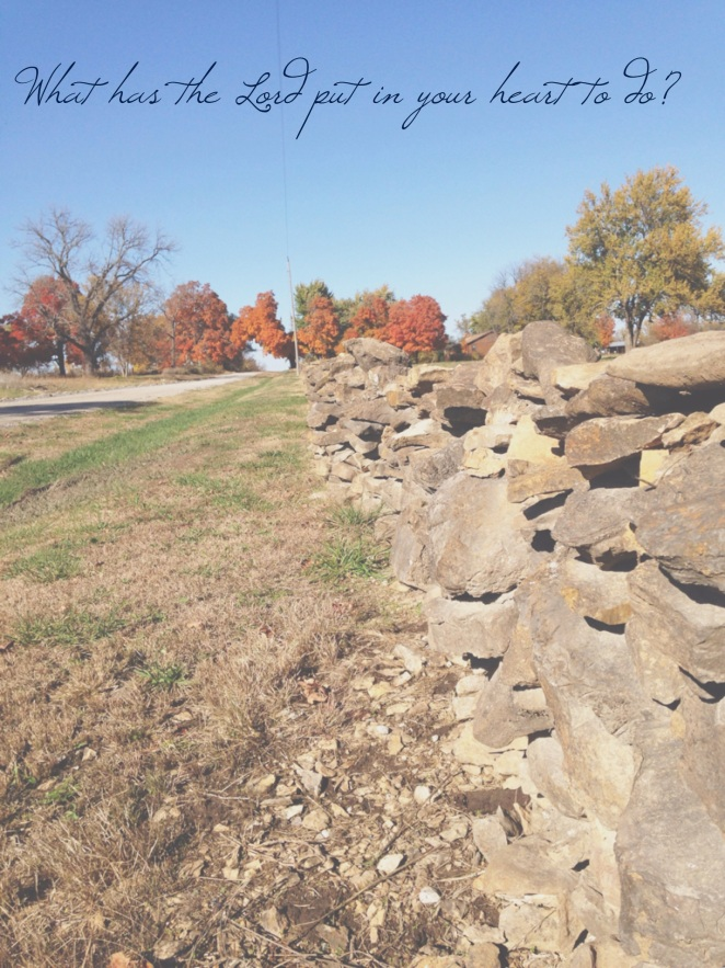 Walls built by the first settlers in Crawford County, Kansas